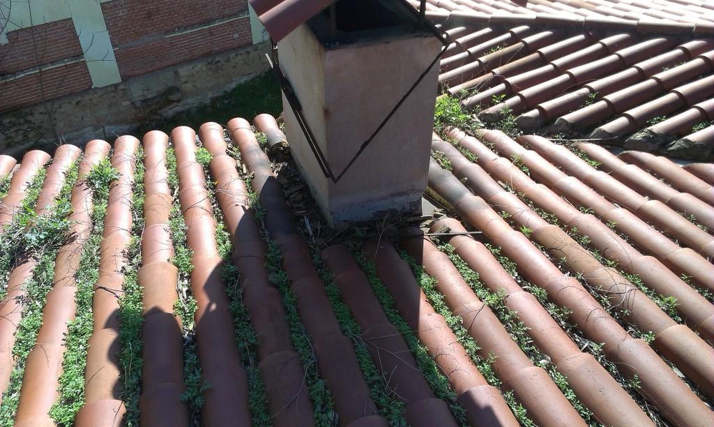 Συντήρηση καθαρισμός στέγης