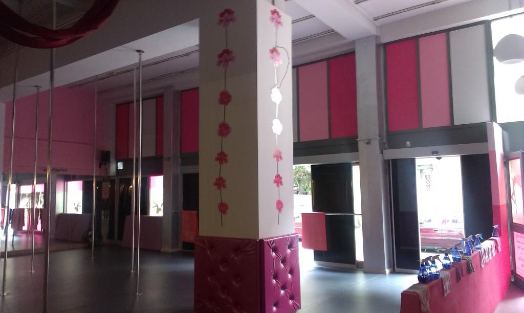 Pole Passion Studio in Peiraias